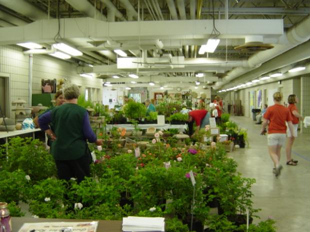 People looking at plants.