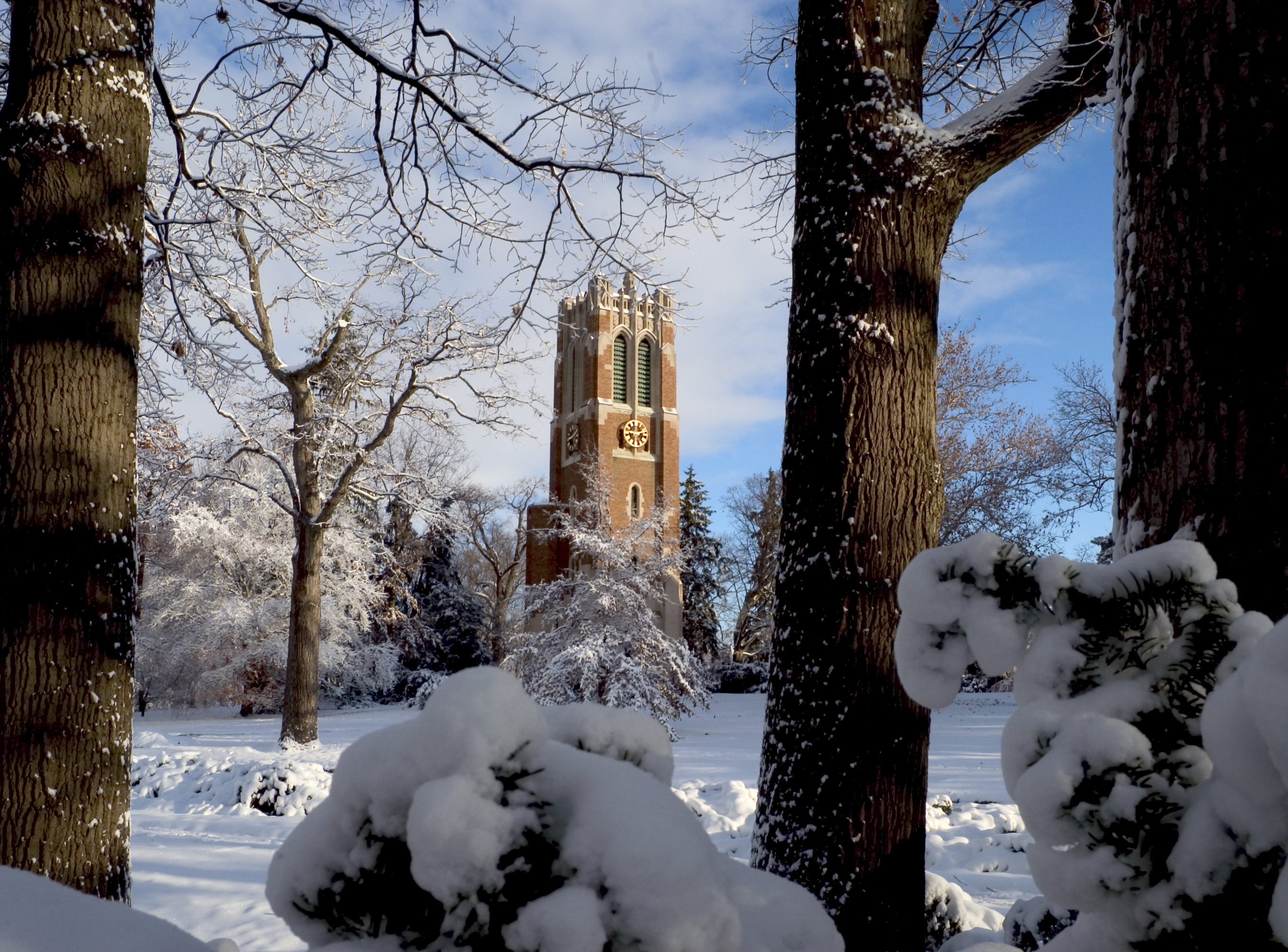 Beaumont Tower in winter