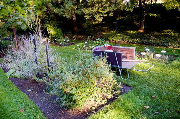 Beal-Gardens-Wheelbarrow_small