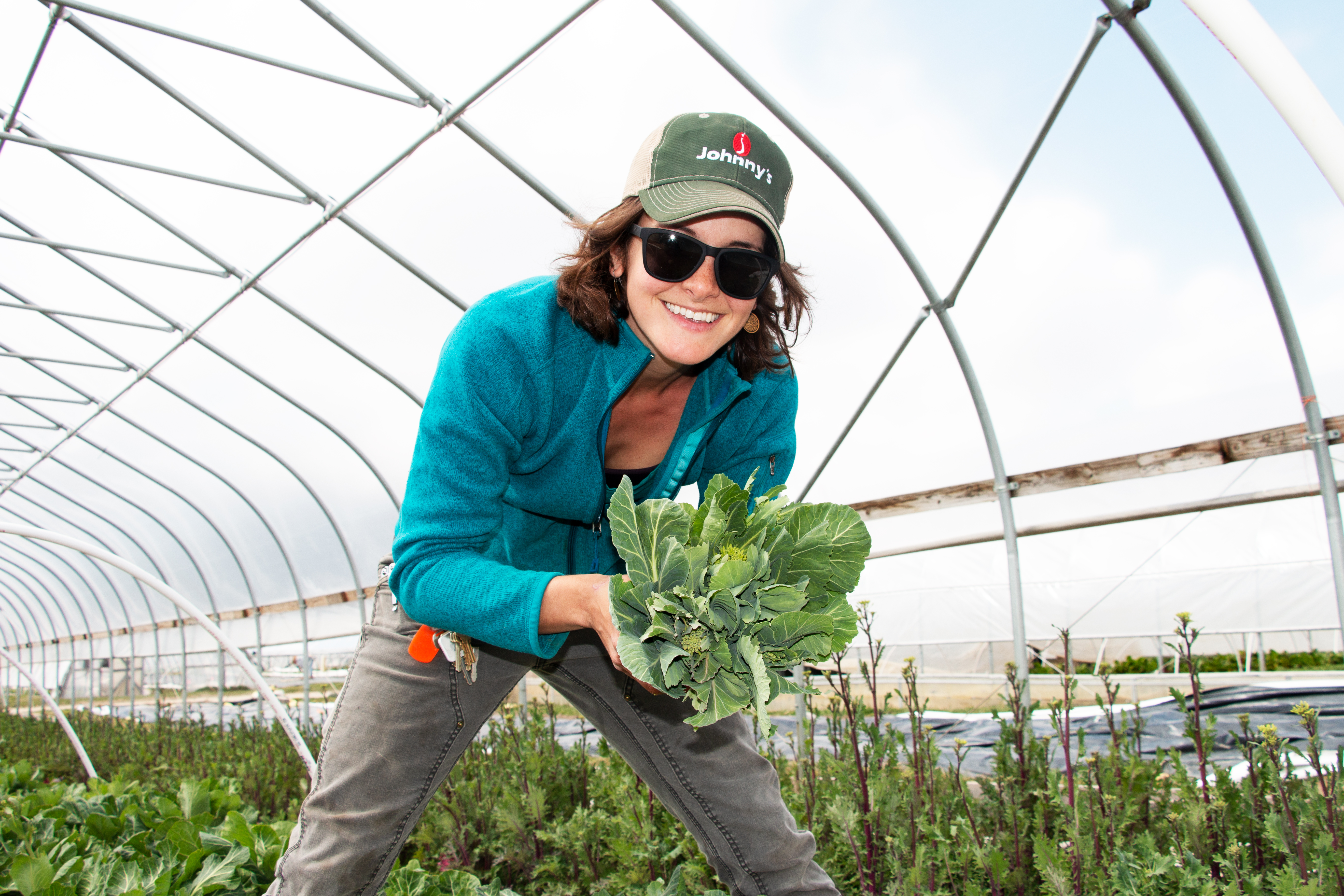 Image of Farm Production Manager, Sarah G. picking vegetables in a greenhouse.